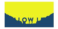 Yellow Leaf Hammocks brand logo